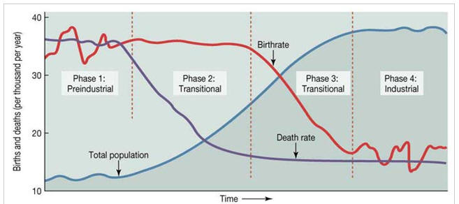what is population transition