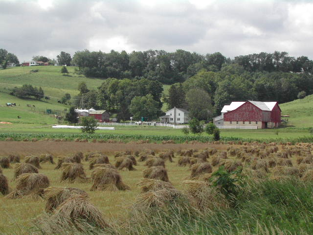 Amish >> Old Order Amish in Holmes County