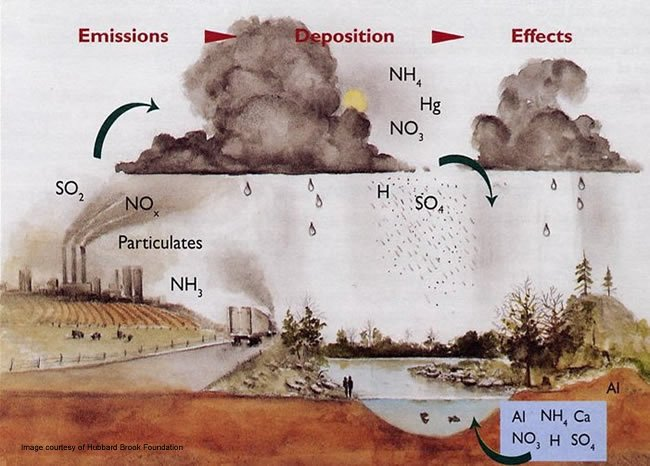 acid rain is pollution essay Acid rain is rain that is more acidic than normal acid rain is a complicated problem caused by air pollution, acid rain's spread and damage involves weather, chemistry, soil, and the life.
