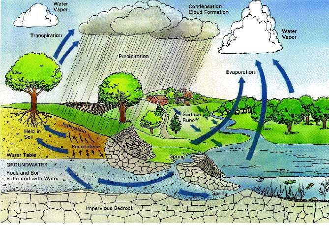 the hazardous acid rain a form of air pollution As the effects of acid rain pollution continue to  with the water and come down in the form of acid rain  see the hazardous effects of acid rain.